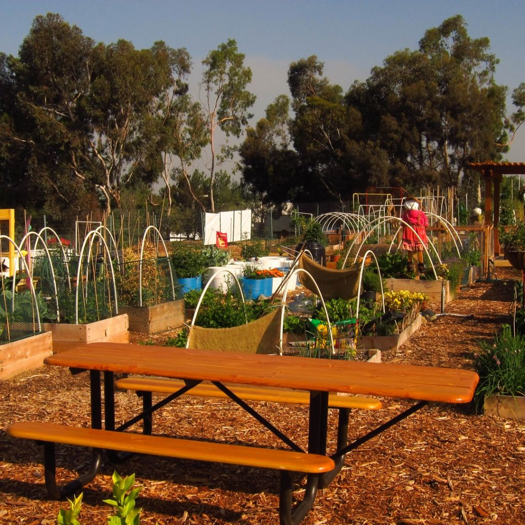 Raised beds and picnic table in the East Anaheim Community Garden