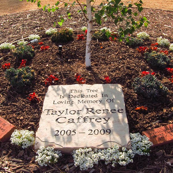 Taylor's Wish tree and plaque
